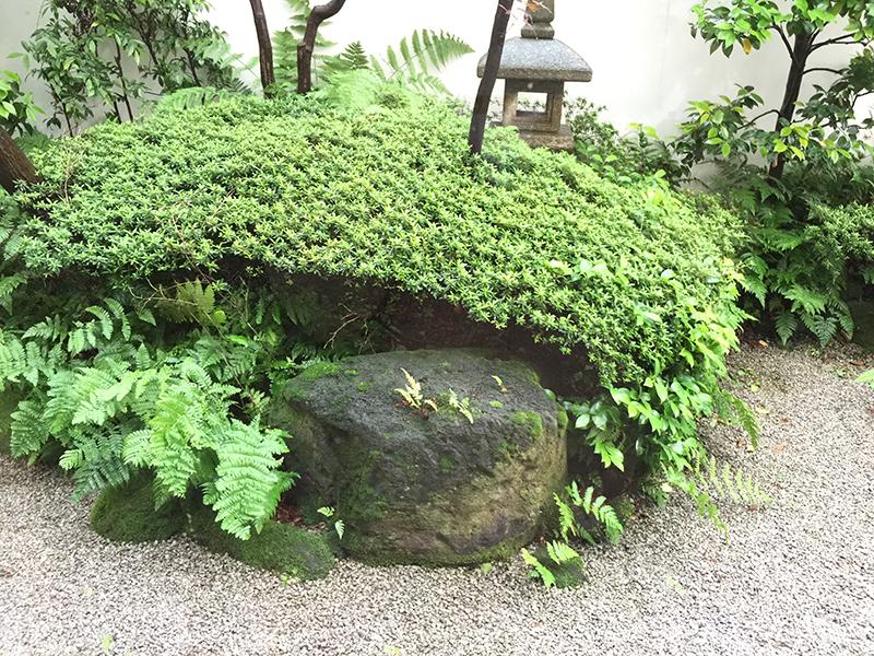 ホテルグランドヒル市ヶ谷の和室の外にはお庭が