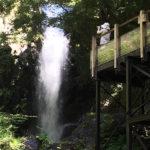 【天城越え】伊豆の河津七滝に行ってきました!